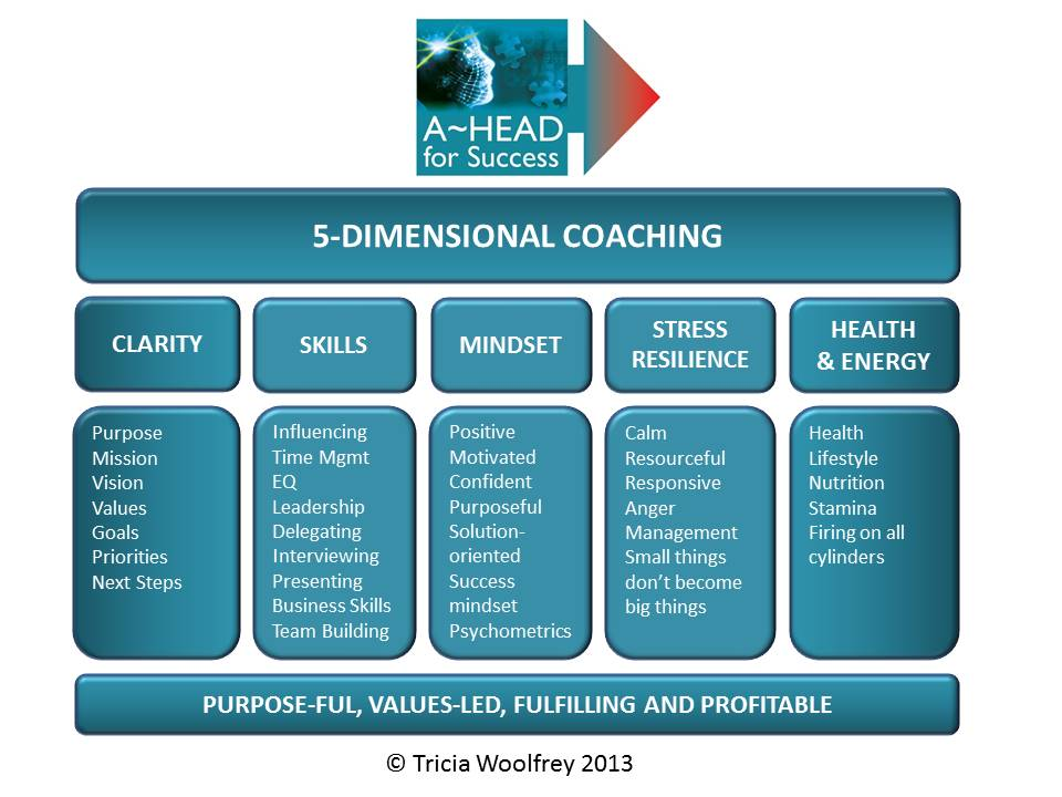 A-HEAD for Success 5D Coaching